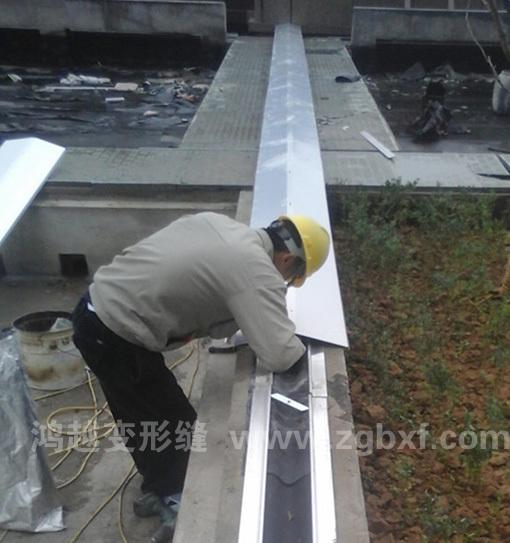 屋面变形缝RM安装图
